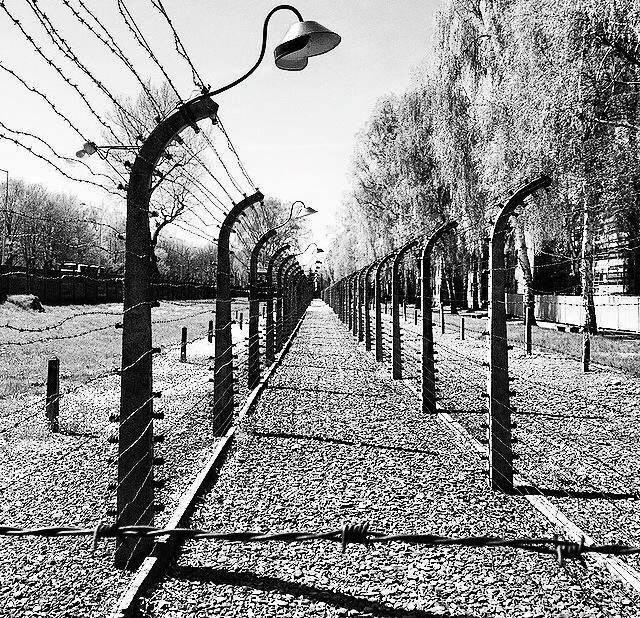 Holocaust & Auschwitz Trips